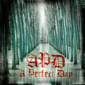 A Perfect Day - ST (front)