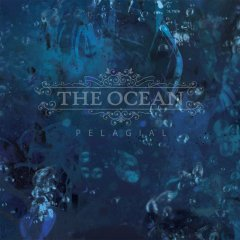 the ocean cover