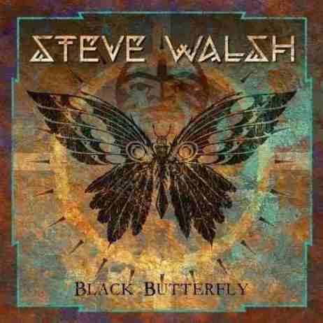 steve-walsh-black-butterfly